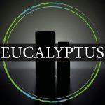 eucalyprtus